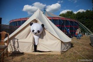 Panda Boy (aka misterebjnr)