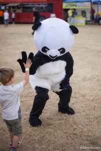 #PandasPrefer Sino